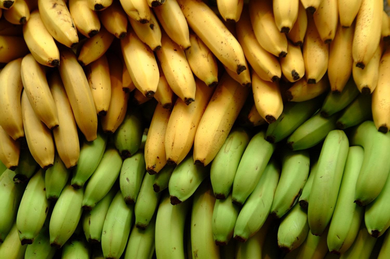 Бананы: польза и вред, калорийность, полезные и лечебные свойства, противопоказания для мужчин и женщин
