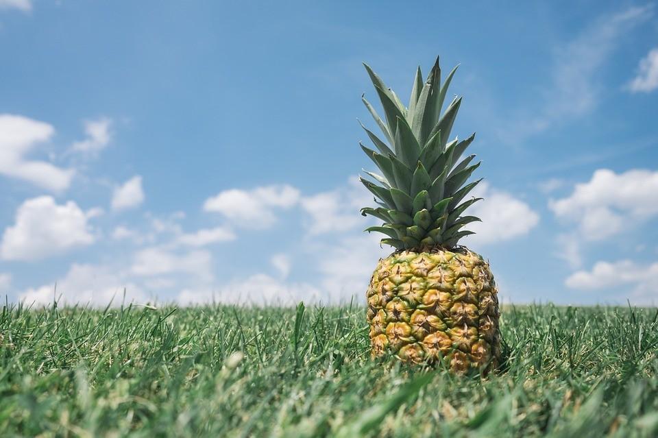 Ананас это фрукт или ягода