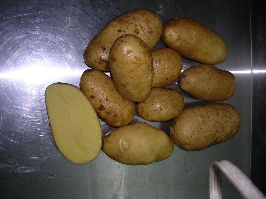 сорта картофеля фото описание очень разваристый городах, где