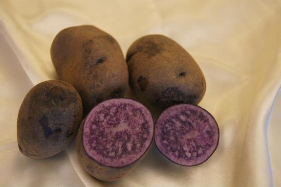 картофель чудесник
