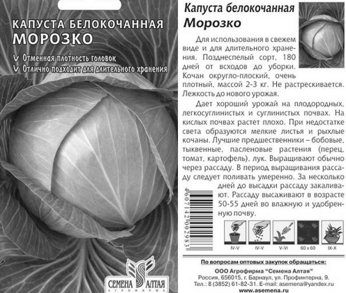 Описание сорта капусты Морозко